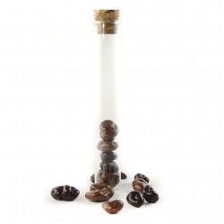 Eprouvette Raisins Enrobés Chocolat Lait et Noir