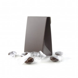 Pochette Palets Nougatine Enrobés Chocolat Lait